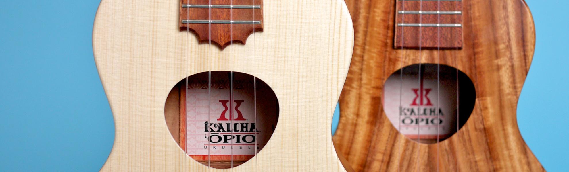 acheter ukulele concert
